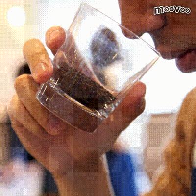 コーヒーの品質鑑定!「カップテスト」を体験してみた