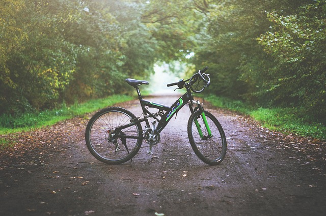森とマウンテンバイクの写真