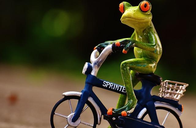 自分に合った自転車の写真