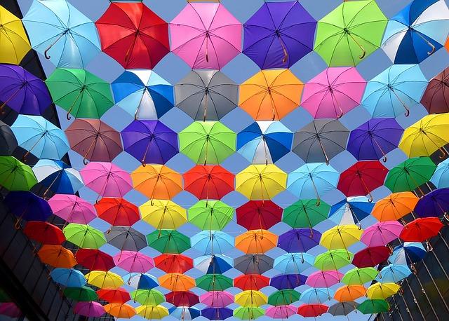 お気に入りの傘を探そうの写真