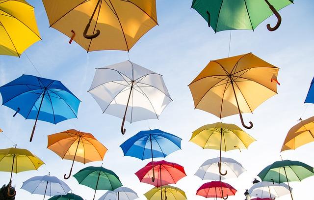 たくさんの傘の写真