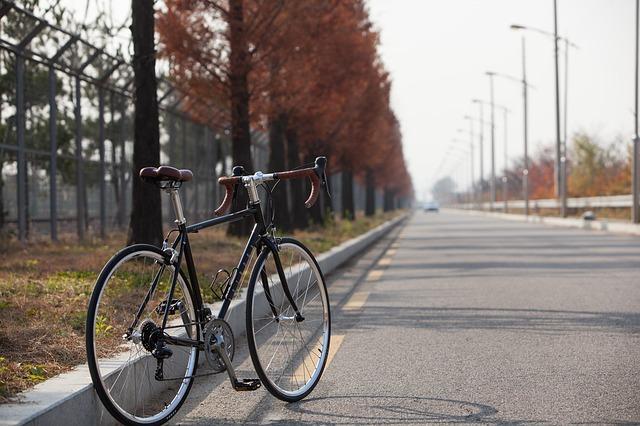 沿道に止めたロードバイク