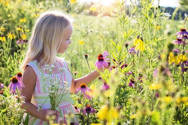 野原にいる子供の写真