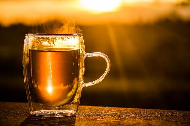 お茶と朝日の写真