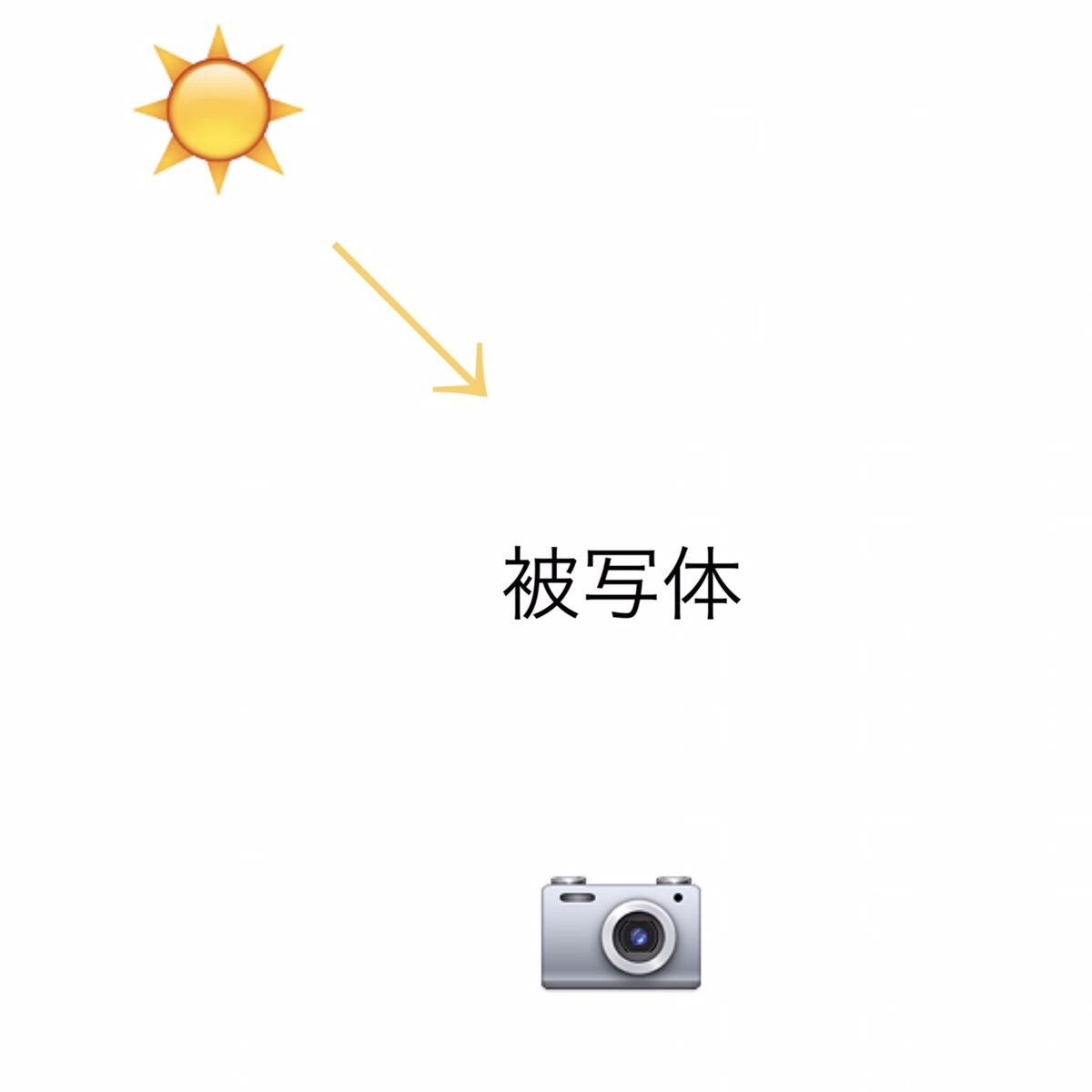 半逆光の図