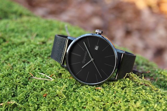 葉っぱの上に腕時計が置かれている写真