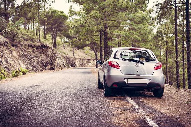 森林でのドライブ