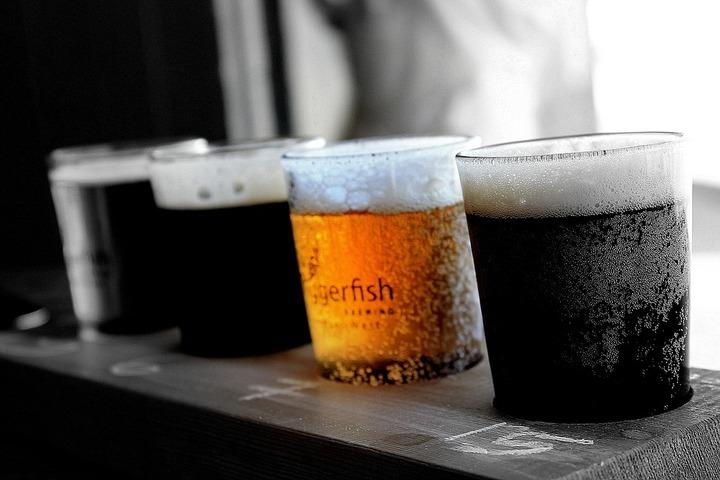 ビールの比較