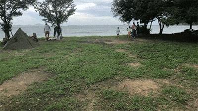 丸山県民サンビーチの林間サイト