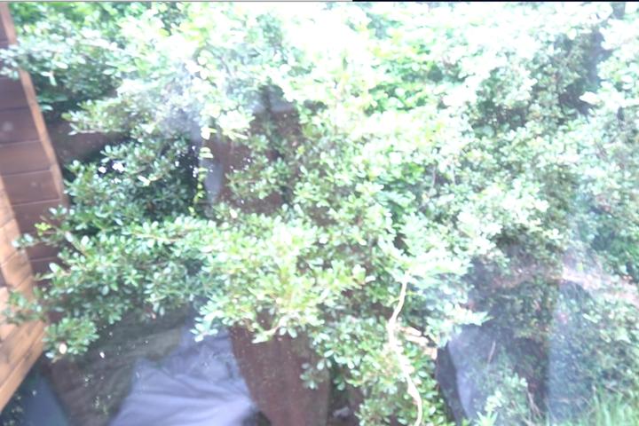 コテージキャンプ 窓の外