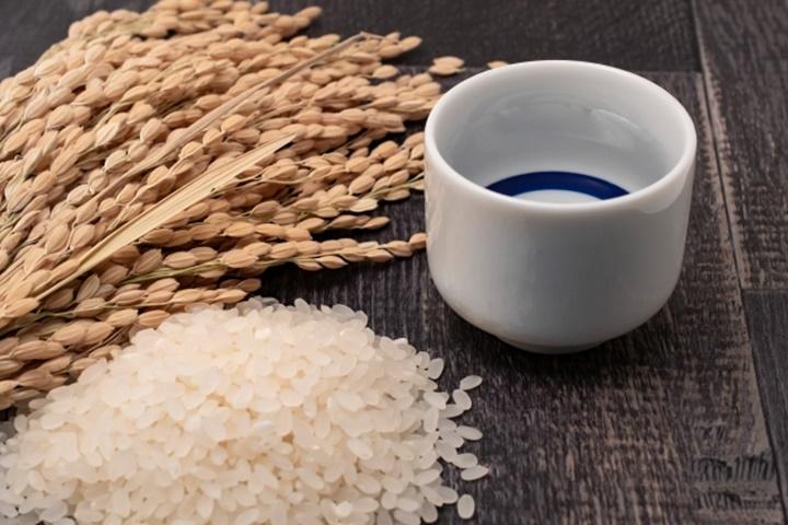 稲穂と米と日本酒