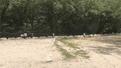 八風キャンプ場オート区画1
