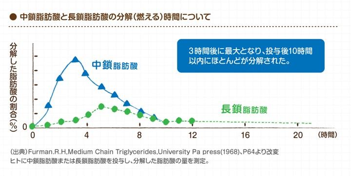 中鎖脂肪酸の分解時間は長鎖脂肪酸に比べて4倍早い!