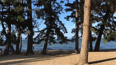 マイアミ浜オートキャンプ場から見える琵琶湖