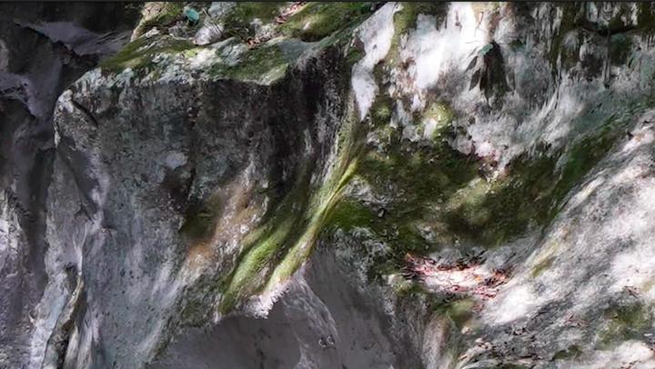α7R Ⅳで撮影した滝の写真のアップ
