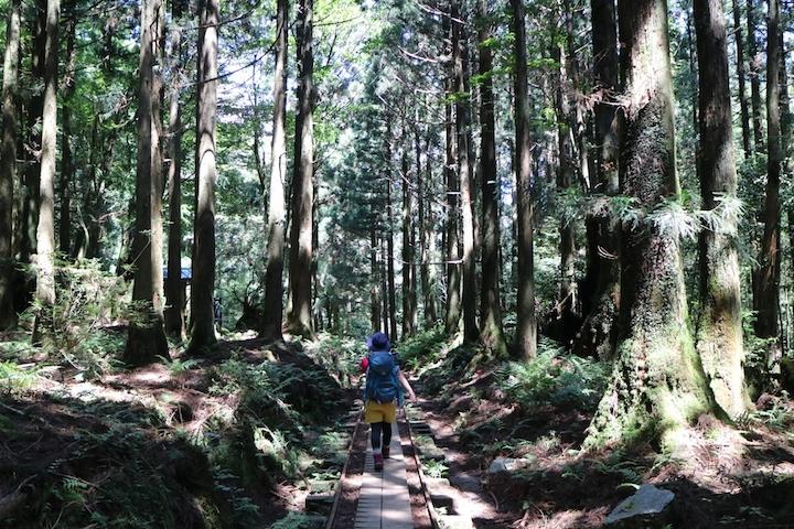 山道を散策