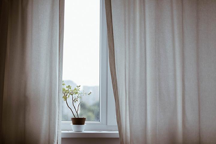 カーテンと植物