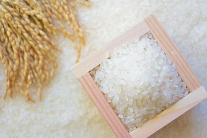 稲穂と升とお米
