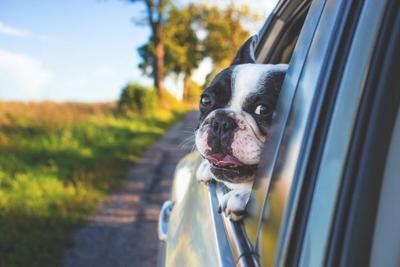 ケンウッドのドライブレコーダーで事故に備える!選び方とおすすめ10選を一挙紹介