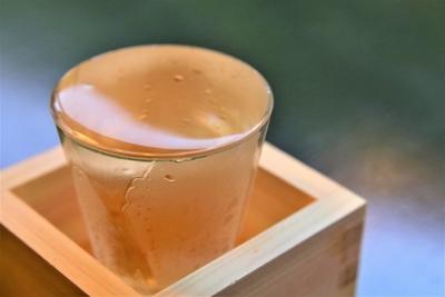 日本酒の種類分けは複雑?酵母による違いや味わいの変化を確認