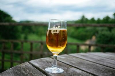 おすすめの缶ビールや美味しい注ぎ方。大手ビール会社3社に取材!