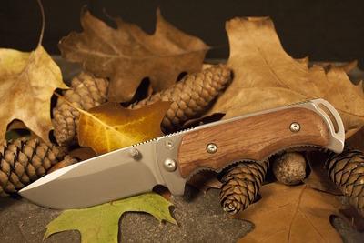 おすすめサバイバルナイフ10選!アウトドアで活躍する便利でかっこいい一本を選ぼう