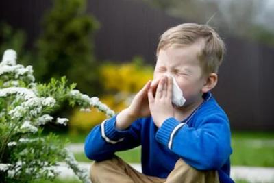 おすすめの花粉症対策グッズを紹介!選び方のポイントもあわせて解説!