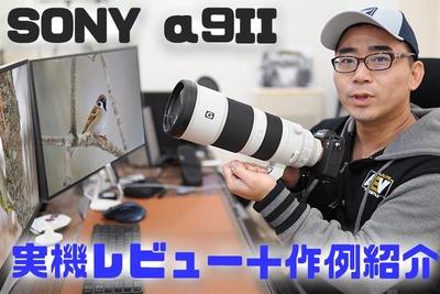【実機レビュー】α9IIとバズーカレンズで野鳥撮影!作例をたっぷり紹介します【ワタナベカズマサのガジェットウォーカー】