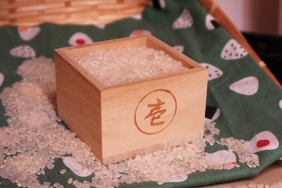 冷蔵庫用の米びつが便利!美味しくお米を保存するポイントは?